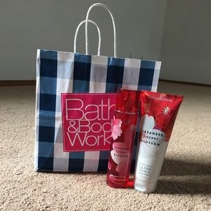 Bath and Body Works body cream and mist (new)